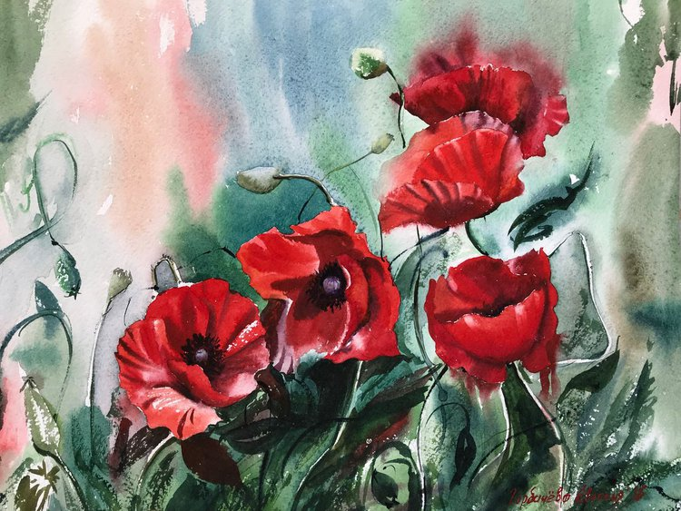 Growing Poppies