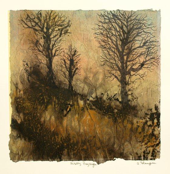 Misty Bogscape 1