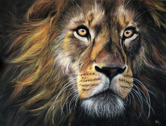 Lion II (Original Painting)