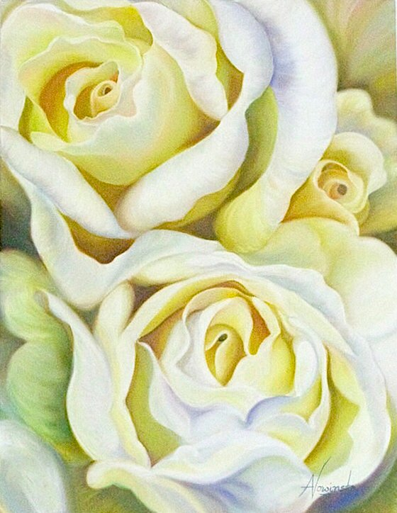 Age of Innocence- white Rose Flower Painting