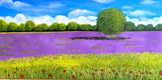 WILD FLOWERS AND LAVENDER