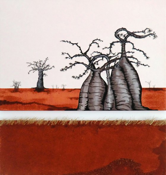 Baobabs in red earth 1-2