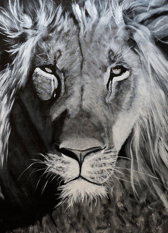 Lion's head !