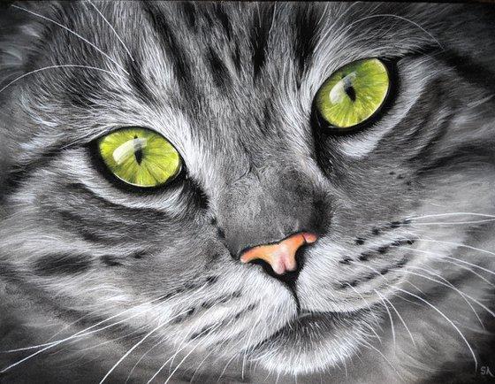 Cats Eyes VII  (Original Painting)