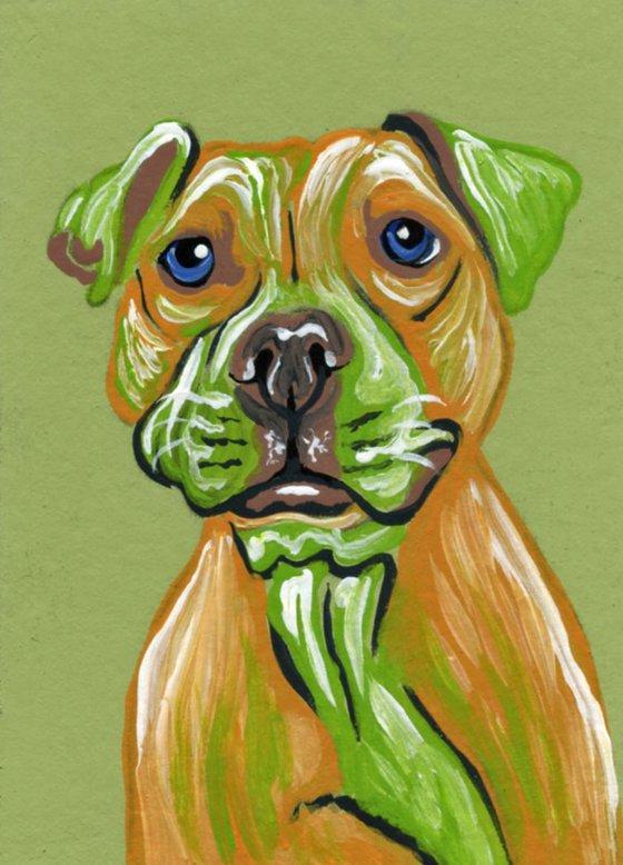 ACEO ATC Original Painting Pit Bull Pet Dog Art-Carla Smale