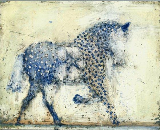 Blue starhorse