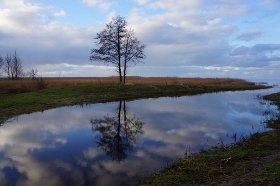 Photography | Curonian Lagoon | Mirrors of Curonian Lagoon