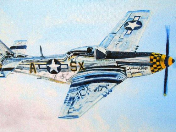 P 51 in Flight