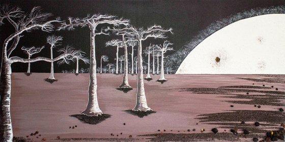 Baobabs in moonlight
