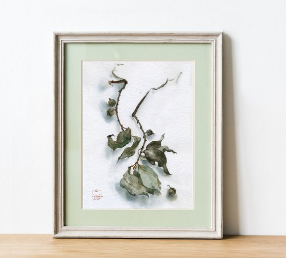 Still life with silver leaves.