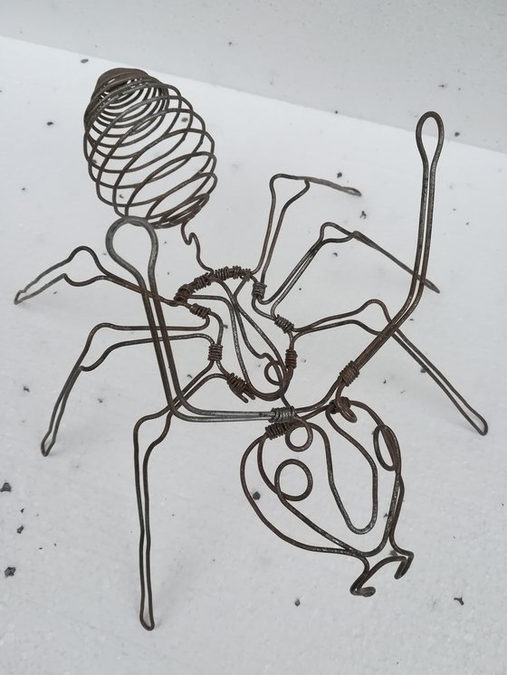 """""""Big Ant"""""""