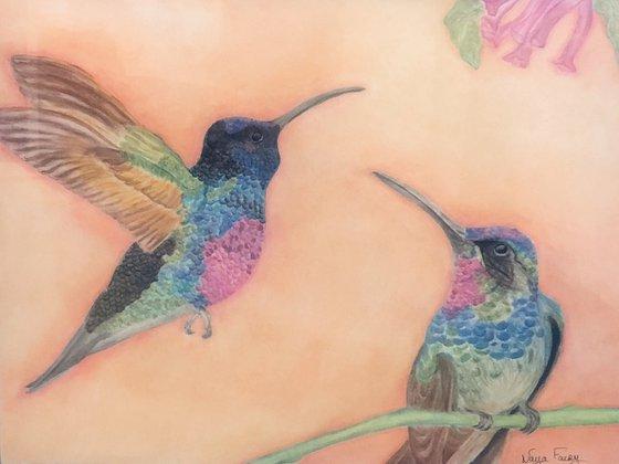 A couple of hummingbirds.