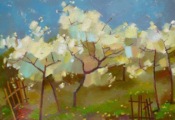 April cherries