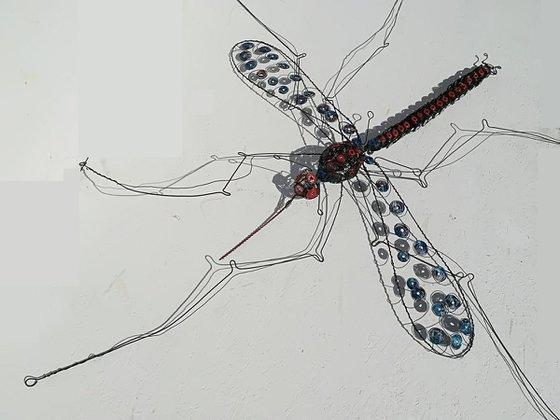 """Mosquito IV"""