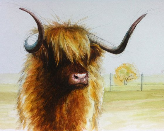 cow mood
