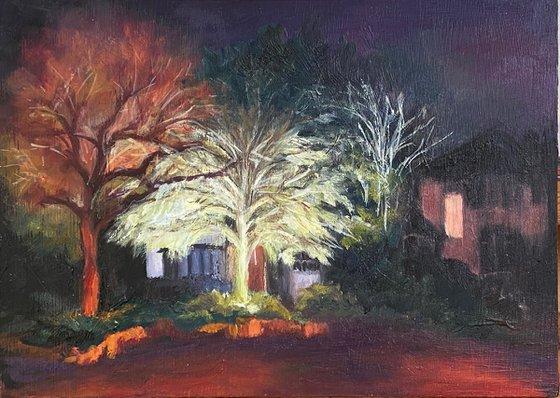 Winter Night on Wise Lane (IV)