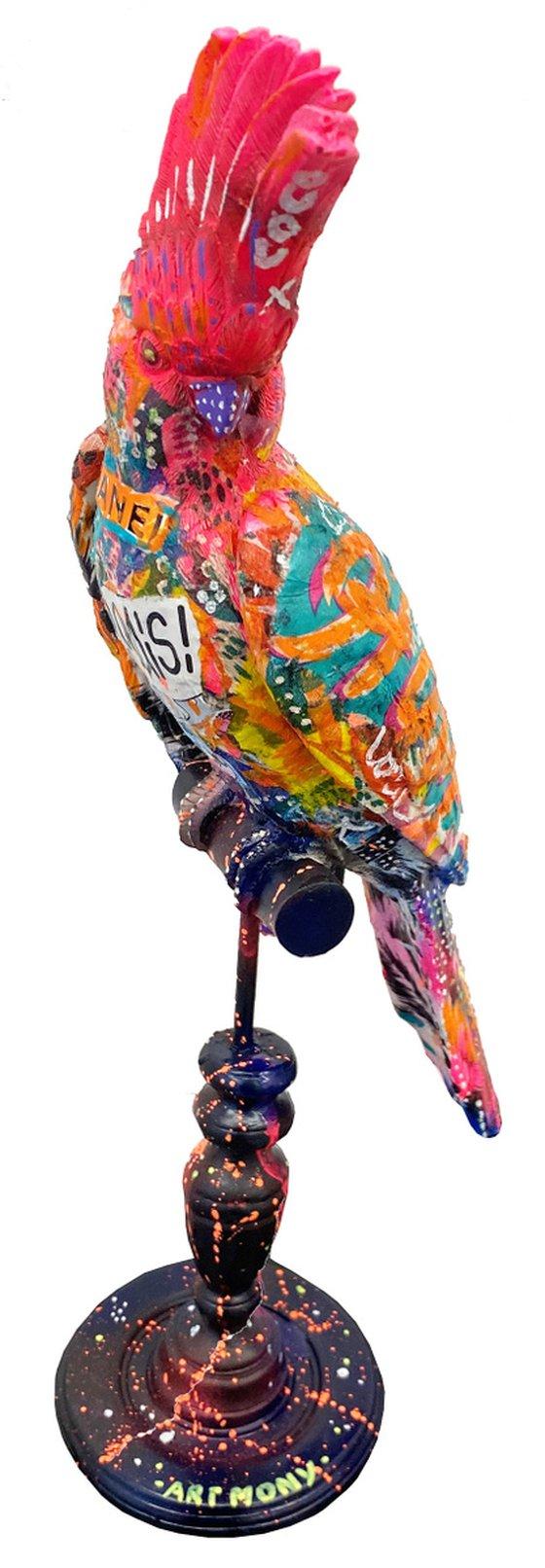 Pop parrot