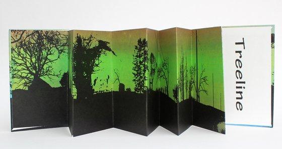 Treeline Artists Book Ed 13-50