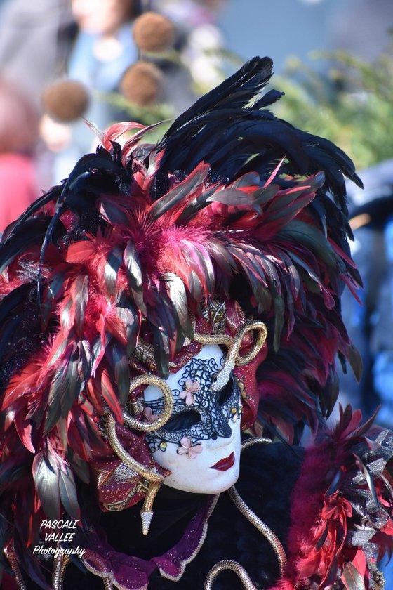 Carnaval 1 - Masque Vénitien