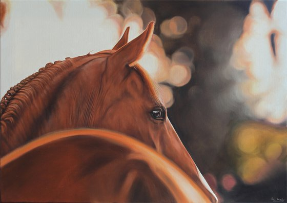 A moment on a rusty horse