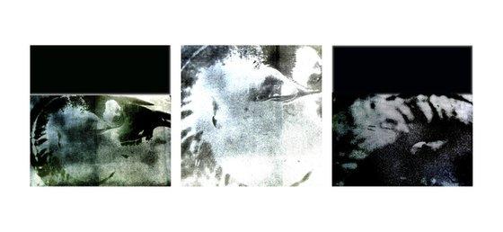 Skull triptych #3