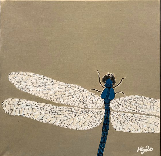 """Dragonfly"""