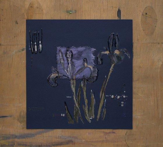 Dark Blue Irises in the Night garden