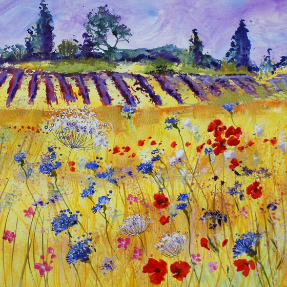 Poppies, Cornflowers, Wild Carrot and Lavender
