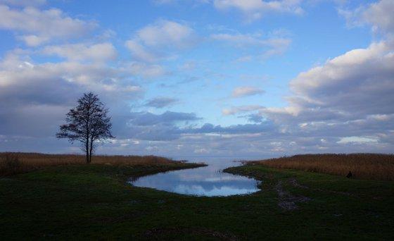 Photography | Curonian Lagoon | Mirrors of Curonian Lagoon II