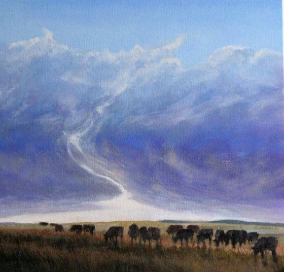 Cows in a storm