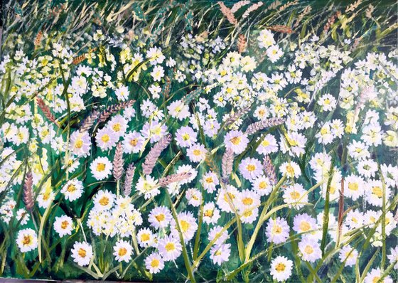 Daises and wheat