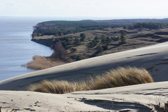 Photography | Dead dunes