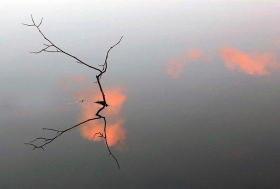 Reflet ZEN