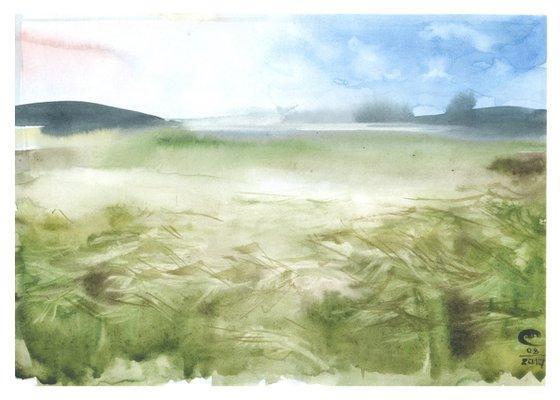 Feather grass, steppe, landscape.