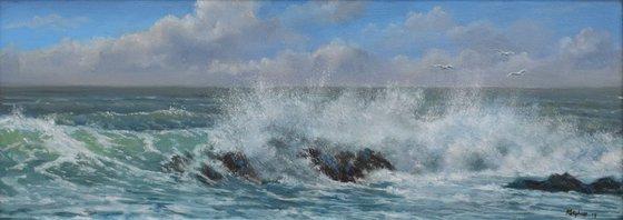 Surf & Gulls