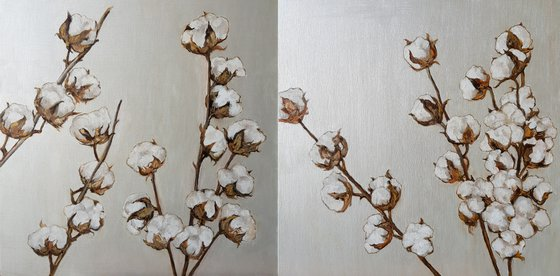 Dry Cotton Branches