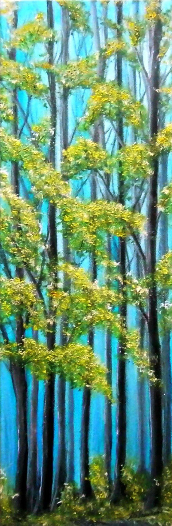 Common Plain Trees ..