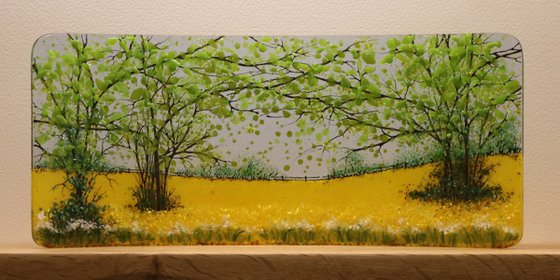 Glass Rapefield Half Curve (Made to Order)