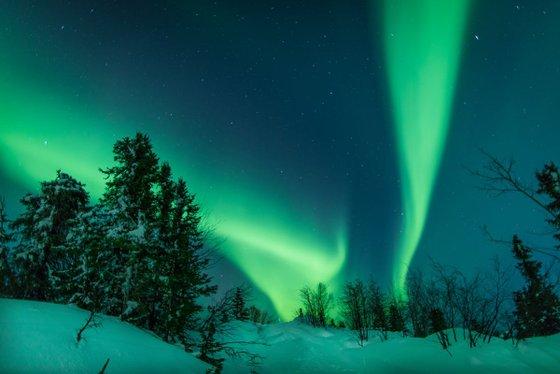 Northern Aurora 1