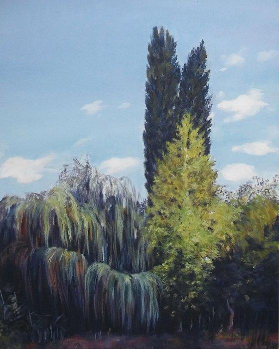 Landscape-Oil on canvas