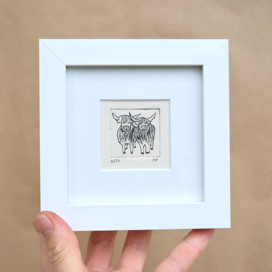 Mini framed two highland cows standing close
