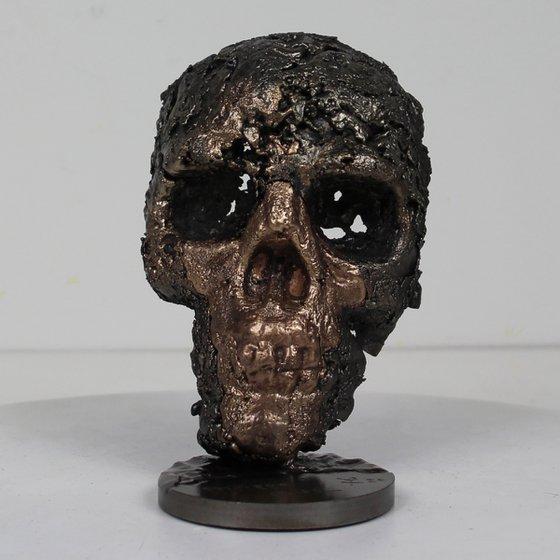 Skull LII - Skull sculpture bronze and steel