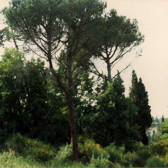 Settignano, Italy