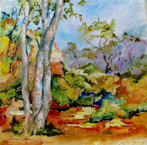 Landscape in the sun