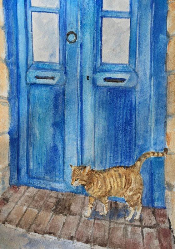 Cat and a blue door