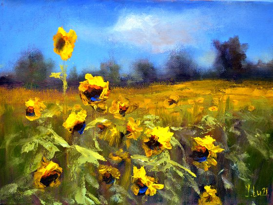 Sunflowers field 3D