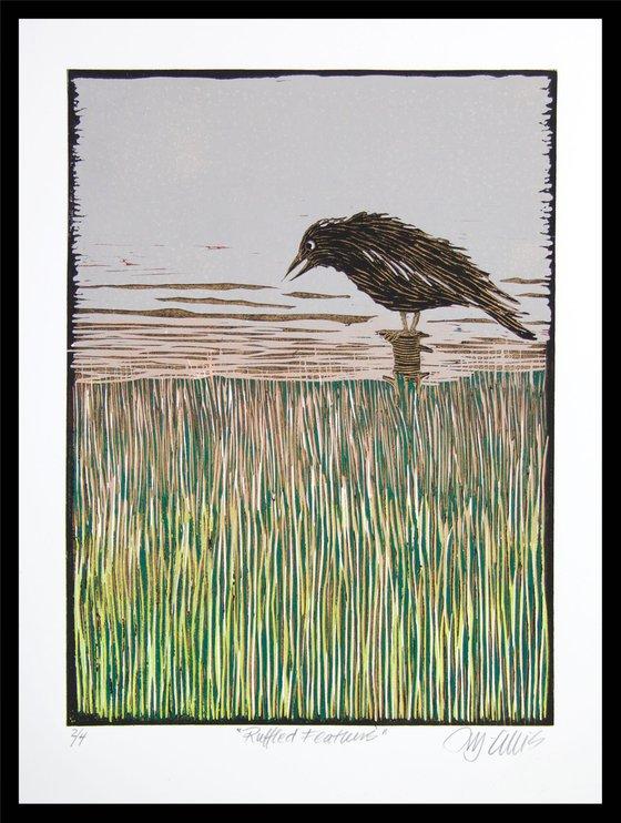 Ruffled Feathers, linocut reduction, last print