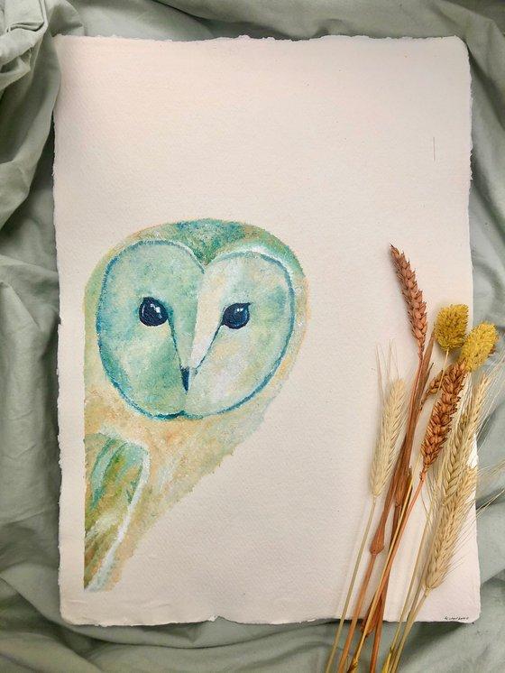 Barn Owl Portrait (A3)