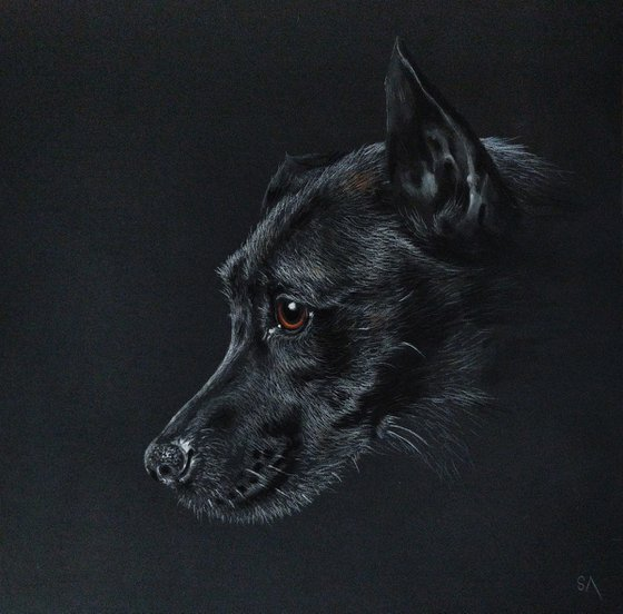 """""""Patiently Waiting II""""     Staffordshire Bull Terrier portrait (Original Painting)"""