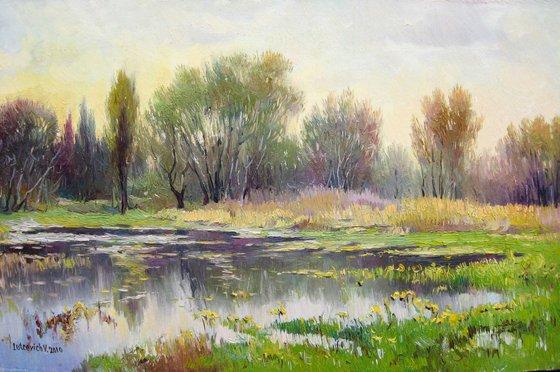 Spring landscape Ukraine Poltava region